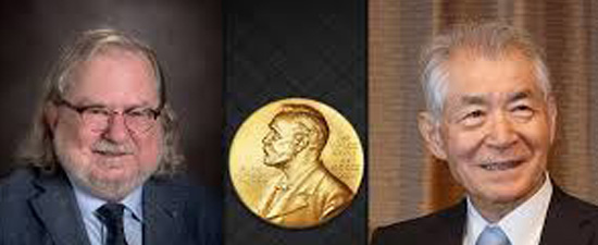 The 2018 Nobel Prize in Physiology or Medicine jointly to James P. Allison and Tasuku Honjo