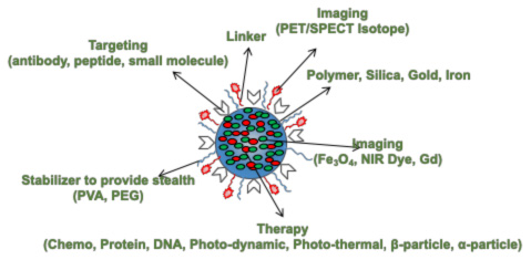 Nano Particle drug for image guided therapy